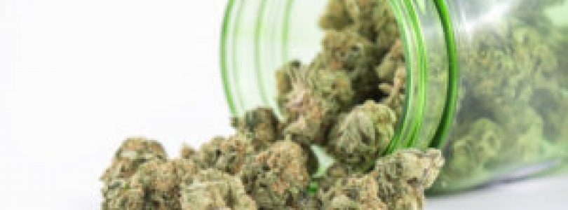 Does Cannabis Intoxication Exists?